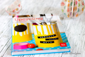 Upcycling-Julia-Romeiss-BLV1